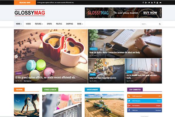 Webmaster Blog 05 -Glossy Mag News Magazine