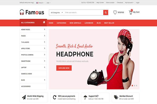 Webmaster Retail 08 - Famous - Electronics Store Website template