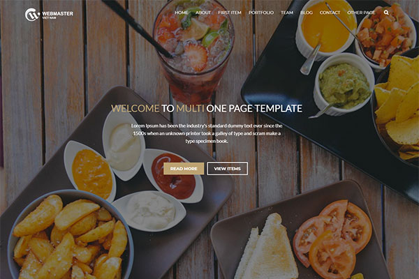 Webmaster Landing page 05 - Multi - one page template